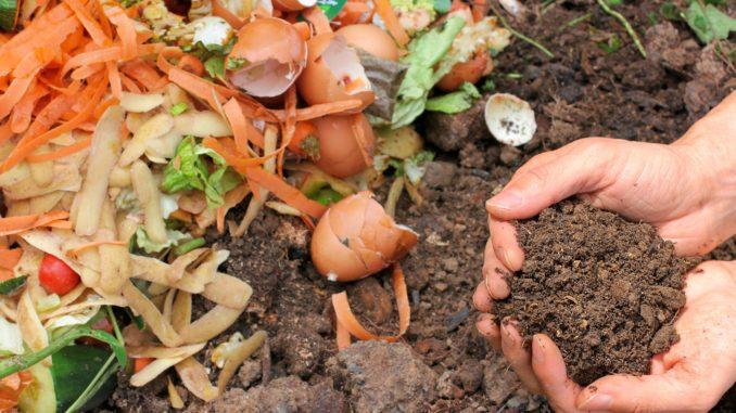 kompost a komposter